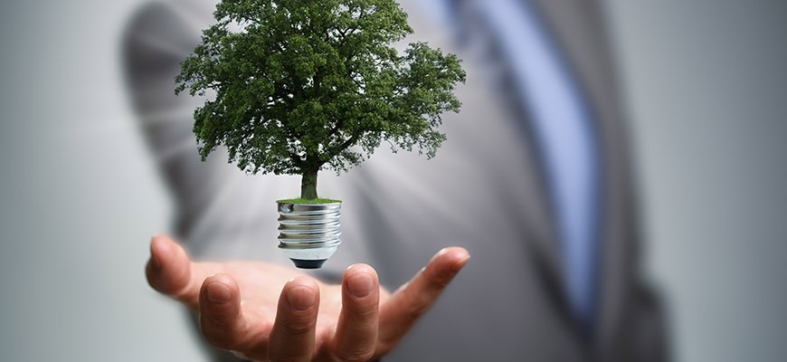 Politicians in business suits holding light bulb, from which a tree is growing